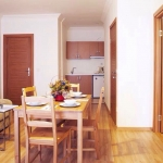 1+1 Fully furnished flat in Taksim